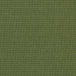 Dupioni Kiwi