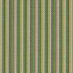 Delray Stripe-Kiwi